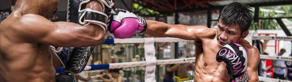 YOKKAO - Tajski tygrys wchodzi do gry